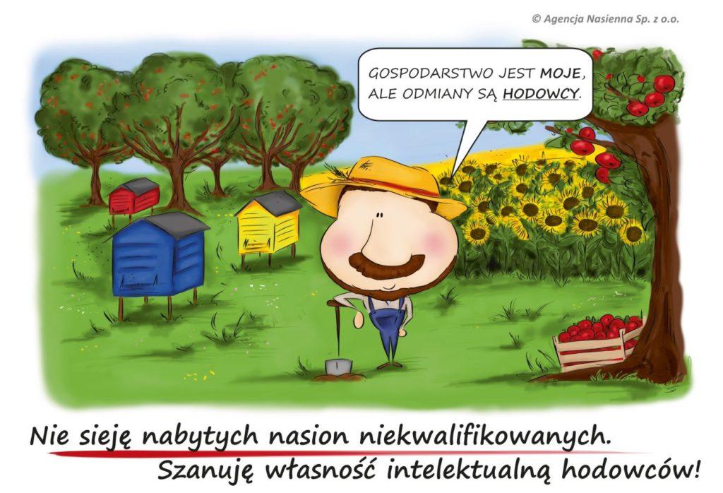Rolnik ekologiczny mówi: Gospodarstwo jest moje, ale odmiany są hodowcy. Nie sieję nasion niekwalifikowanych. Szanuję własność intelektualną hodowców!